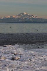 Snow and Ice on the Beach (Serthra) Tags: tsawassen bc canada ca canoneos5dmarkii canon5dmark2 beach sea seascape seaside winter ocean cold snow snowy ice mountains mountain coast nature reflections landscape water frozen white weather neve mountbaker mountainside