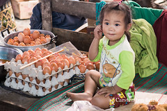 Yes, I broke all the eggs. It was fun. Don't tell my mother. (10b travelling / Carsten ten Brink) Tags: 10btravelling 2016 asia asie asien bolaven boloven carstentenbrink genericplaces iptcbasic lao laos laotian mekong otherkeywords pakse salavan southeast southeastasia thateng xekong baby broken child eggs girl market plateau province punctured river south tenbrink children
