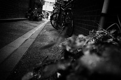 alley (s_inagaki) Tags: alley tokyo japan street snap bicycle blackandwhite bw monochrome