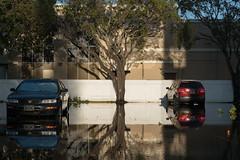Parking Lot by scottbrennan6 - Miami, Florida
