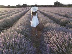 Por los campos de Lavanda (kinojam) Tags: lavanda lavender campo field retrato portrait chica girl brihuega guadalajara kino kinojam canon canon6d