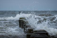 Spray (Tim Allendörfer) Tags: water sea seascape ostsee nordsee usedom balticsea splash seaspray wet stormy move wood waves wave nature fresh beach seaside breakwater rough