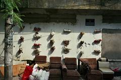 Hanoi street (InSoManyWords) Tags: film 35mm fujisuperia200 fujifilm rollei35 street streetphotography hanoi vietnam