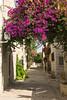 Neve Tzedek (geneward2) Tags: side street alley neve tzedek jerusalem israel