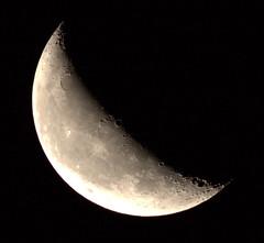 _MG_1015.CR2 (jalexartis) Tags: moon waning waningmoon waning419 dark afterdark night nightphotography nightshots lighting canonef400mmf56lusmlens canonextenderef2xiii 800mm 400mmx2