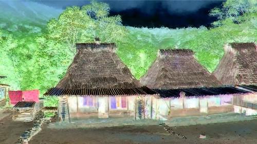 Indonesia - Flores - Traditional Village Bena - 106bb