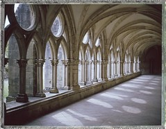 cloître de l'Abbaye de Noirlac - Cher (JJ_REY) Tags: cloître cloister abbaye abbey noirlac polaroid250 fuji instantfilm fp100c cher france