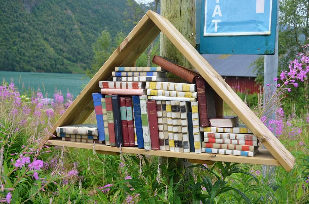 Image result for fjaerland booktown