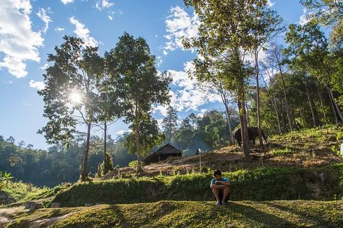 trekking chiang mai - thailande 6