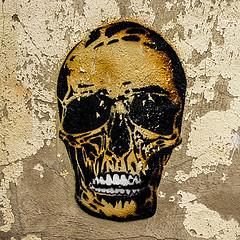 Bare Bones (Brian Travelling) Tags: art artistic arty argyllshire arrochar skull grafitti bones bare pentaxkr pentax pentaxdal decay disused abandoned derelict peelingpaint paint peeling old aged rough texture scotland lochlong
