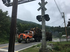 Mountain Arteries (cliffordswoape) Tags: rainy summer mountains briceville tennessee poles phone power electric highway crossing rr railway railroad logtruck logs logging