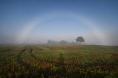 L'arc-en-brouillard  (fogbow) (Excalibur67) Tags: nikon d750 sigma 1224f4556iidghsm paysage landscape nature brouillard brume mist fog arcenbrouillard arcencielblanc ciel sky