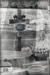 ... (*Jost49* (±Off)) Tags: cimetière tombe grave croix cross papa dad nb bw monochrome texture panasonic lumixfz1000