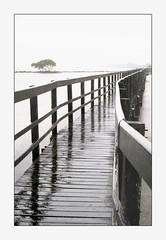 Urunga - NSW (marcel.rodrigue) Tags: urunga boardwalk newsouthwales midnorthcoast marcelrodrigue jkamidnorthcoast