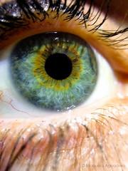 #ojo #eye #2016 #pupila #pupil #pestañas #eyelashes #azul #blue #verde #green #amarillo #yellow #amor #love #hermana #sister #macro #photography #photographer #iphone #iphone5 (Manuela Aguadero) Tags: iphone5 sister blue azul pupil amor eyelashes photography 2016 iphone verde green macro hermana pupila love amarillo ojo photographer yellow eye pestañas