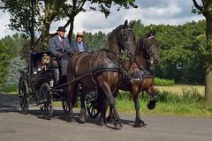 Koets (wjpostma) Tags: fraeylemakoetsentocht koets paarden horses coach kocsi coche kutsche