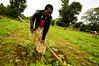 Ashley Peterson - DSC_0176 (LandOLakesID) Tags: ige innovation tanzania usaid africa gender smallholder