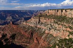 "Grand Canyon, Arizona, US August 2017 490 (tango-) Tags: grandcanyon arizona canyon us usa unitedstates america westernamerica west ovest америка соединенныештаты сша 美國""美國""美國 amerika vereinigtestaaten アメリカ 米国米国 соединенные штатысша"