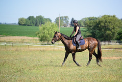 Cross Country Riding (shirley319) Tags: d600 erica kfjonesclinic kane paradeuxfarms thoroughbred crosscountry equestrian horse hunterjumper wapella illinois unitedstates