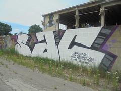e tutta la ciurma (en-ri) Tags: sac 2016 bianco nero viola monk rio rais zona bisi zenit yalbis fauno mars ago mors bologna wall muro graffiti writing