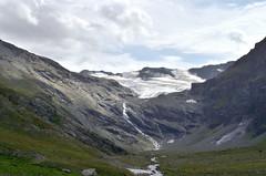 Wilderness (Il cantore) Tags: montagna mountain cielo sky nuvole clouds ghiacciaio glacier prato erba meadow grass torrente acqua stream water valledaosta valgrisenche roccia rocks