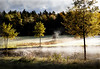 Dream in morning (BirgittaSjostedt) Tags: autumn landscape field rivr fog tree flower deer cloud forest texture paint light sun rays creation magicunicornverybest ie birgittasjostedt