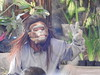 barong and keris dance (fernando isler caguete) Tags: fernandoislercaguete uluwato krystel paltado bali indonesia templemaxone legian jimbaran beachmt batur lake kintamani rice terraces batik barong dance tanah lot pura tirha empul temple maxone