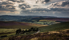 the road through ( explored) (Phil-Gregory) Tags: nikon d7200 stanageedge sigma18250macro national nature nationalpark naturalphotography naturalworld natural naturephotography countryside colour peakdistict derbyshire scenicsnotjustlandscapes landscapes