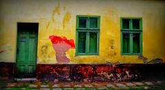 Colours of decay (Anoplius) Tags: anoplius nikon madocsa hungary ungarn colour color window fenster tür door fassade yellow gelb green grün red rot house haus village dorf