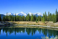 Forgetmenot Pond (Bluesky251) Tags: alberta beautiful bench blue bright calm canada color daylight daytime fall forest forgetmenot grass green hiking lake landscape light mountains natural nature outdoor pond reflection rocks sky skyline snow travel warm water white kananaskis photography view