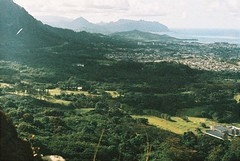 F1000031 (nautical2k) Tags: fed5b canon50mmf14ltm lomography200xpro hawaii oahu honolulu