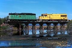 Just like the Ducks (C.P. Kirkie) Tags: oregoncaliforniaeastern oce ocerailway railroads trains klamathcounty oregon shortlinerailroad shastacascadewonderland