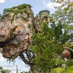 WDW Aug 2017 - Exploring Pandora - The World of Avatar thumbnail