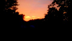 Beautiful Summer Sunset! (Maenette1) Tags: beautiful summer sunset colors clouds trees neighborhood menominee uppermichigan flicker365