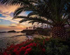 Sunset over Laguna Beach's Treasure Island Park at the Montage Resort @visitlaguna @montagelaguna (Tom.Bricker) Tags: ifttt instagram