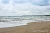 20170819-IMG_5759-WM (Pamela McLellan Zmija) Tags: saugeenshores portelgin lakehuron august2017 waves water beach beachlife cottagelife cottage pamelazmijaphotography pamelamclellanzmija