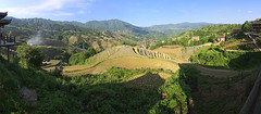 rice terraces (koaxial) Tags: p5266035ap5266039aa koaxial china 2017 rice terrace pano hugin longsheng