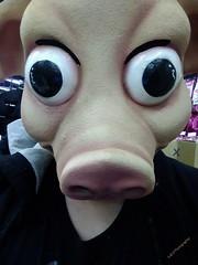 OINK,OINK! (PhotoJester40) Tags: indoors inside halloweencostume pig beingsilly havingfun stranger posing amdphotographer piggingout humor