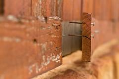 (Nauman's Photography) Tags: bokeh dof f18 fstop 50mm t3i canon eos rebel nail nails board wood