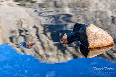 Reflection of Mount Audubon