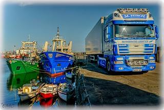 Fishing Logistics
