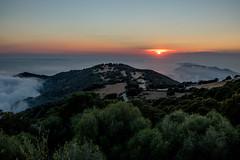 Landscape in Carghese, Korsika (mripp) Tags: art kunst vortage retro old landscape landschaft korsika corse frankreich carghese sunset sony rx1rii beauty sky sea ocean