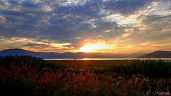170829-50 Sunset on Ste-Lawrence (clamato39) Tags: coucherdesoleil sunset fleuvestlaurent îleauxcoudres provincedequébec québec canada ciel sky clouds nuages river stlawrenceriver eau water fleuve