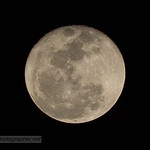 Moon 7-8-17 thumbnail