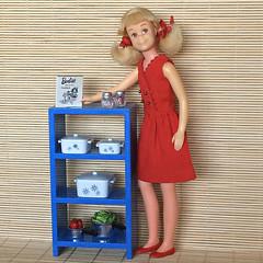 (Inger K) Tags: mattel skooter vintage barbie learnstocook rement ikea lillabo