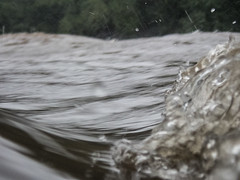 UW110104.jpg (jramspott) Tags: georgia storm river nature water chattahoochee atlanta rain tropicalstorm irma unitedstates us