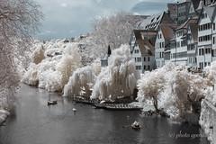Infrared Summer - Tübingen (gporada) Tags: infrared tübingen neckarriver welltaken world100f nikon d40 infraredconversion diy germany badenwürttemberg