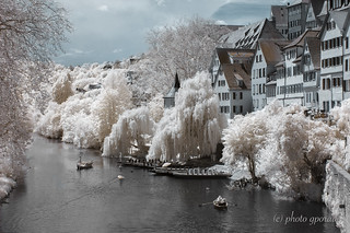 Infrared Summer - Tübingen