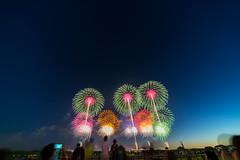 DSC02254 (ishizen) Tags: sony a7ii α7ii japan tokyo sel55f18z photo photoshoot photograph camera mirrorless zeiss hanabi 花火 山形 酒田 sakata yamagata firework sel1224g