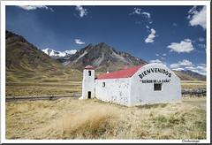 Peru. Altiplano (doctorangel) Tags: doctorangel angel doctor peru puno andes altiplano soroche sudamerica sud america